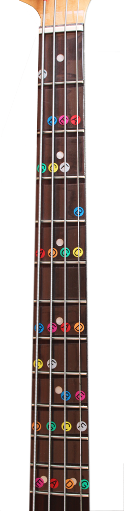 image of a don't fret note map for bass guitar showing the natural notes for the first twelve frets of a bass guitar